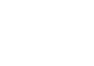 Level 5 Mentoring